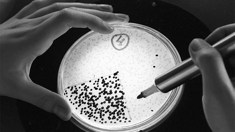 Científico ruso se inyecta 'células eternas' halladas en Siberia