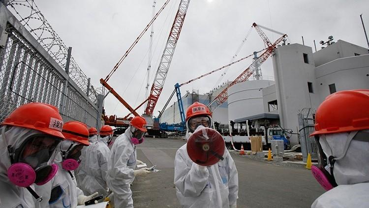 """""""La arrogancia y la ignorancia"""" de diseñadores causaron el desastre de Fukushima"""