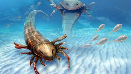 Un escorpión marino gigante, el depredador más antiguo de todos los tiempos