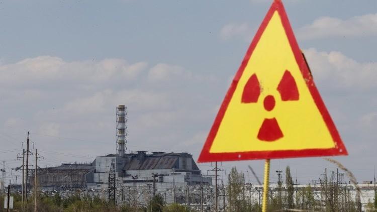 Chernóbil se convierte en un paraíso para la fauna silvestre que abunda en la zona de exclusión
