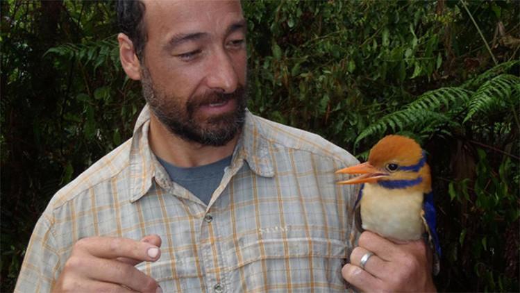 Polémica: en nombre de la ciencia, mataron un ave que no había sido vista en medio siglo