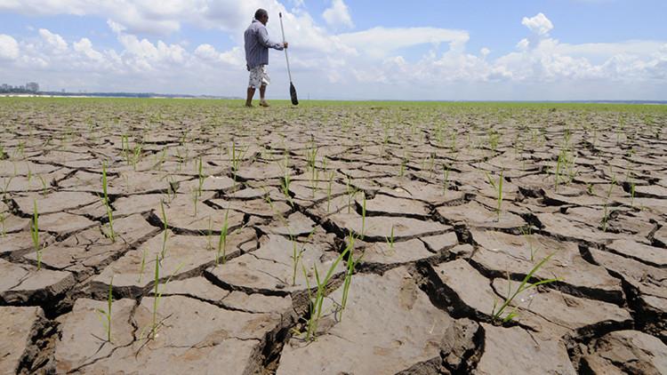 Identifican 'puntos de inflexión' por cambio climático capaces de pronosticar desastres naturales
