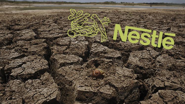 Activistas demandarán a Nestlé por la sequía de California