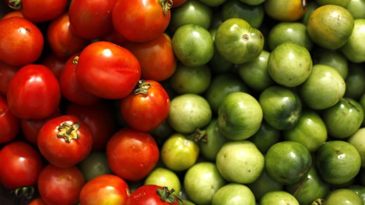 Crean tomates-fábricas de elementos químicos que tratan el cáncer y otras enfermedades