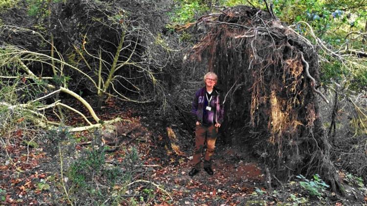 Hallan junto al Stonehenge una 'ecocasa' prehistórica más antigua que el monumento megalítico