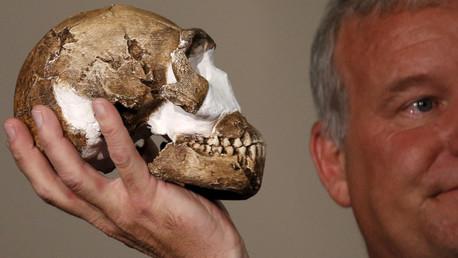 El profesor Lee Berger sostiene una réplica del cráneo de la receientemente descubierta especie humana Homo naledi