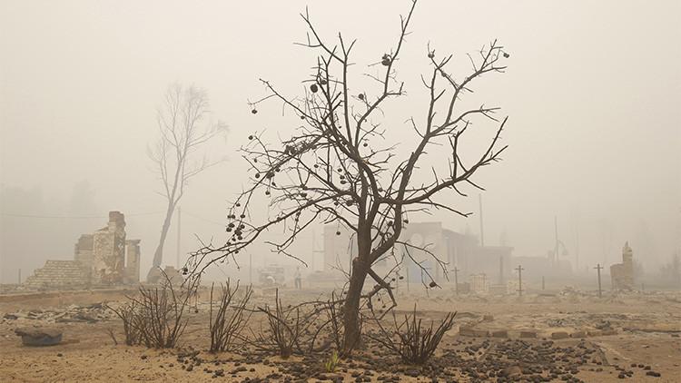 Resultado de imagen para cambio climatico problemas