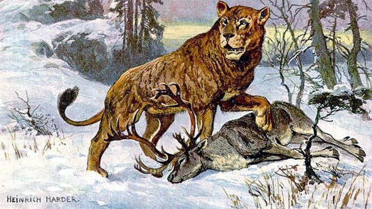 Científicos rusos podrían 'revivir' al león cavernario extinto hace 10.000 años