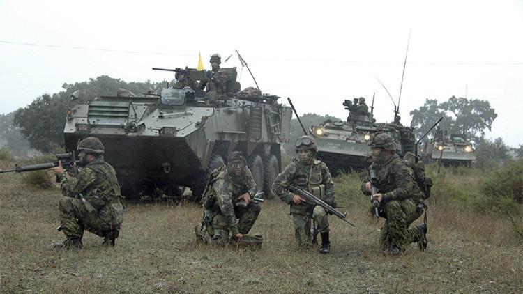 La OTAN adoptará las medidas para garantizar la seguridad de Turquía