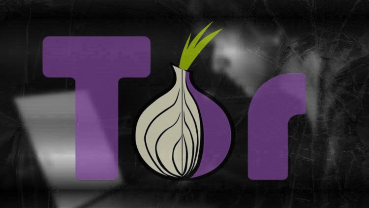 ¿Podrá Tor devolver la privacidad a sus usuarios? Cómo se prepara la red para recuperar al anonimato