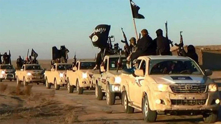 """Congesista de EE.UU.: """"Turquía está fortaleciendo al Estado Islámico"""""""
