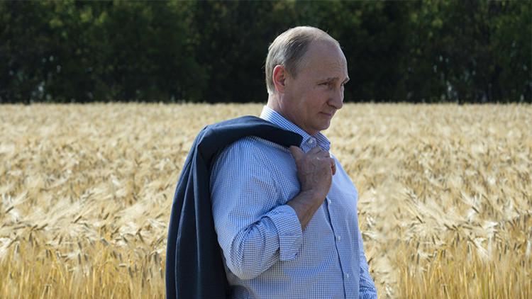 """Putin: """"Rusia podría convertirse en el mayor proveedor mundial de alimentos no transgénicos"""""""