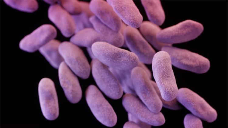 'Amenaza fantasma', la superbacteria altamente mortífera que se extiende por EE.UU.