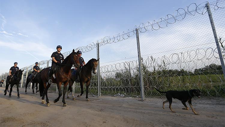 Policía húngara a caballo patrullando la frontera con Serbia, en Röszke, Hungría, el 14 de septiembre de 2015.