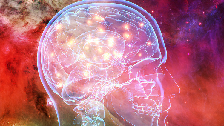 ¿Los humanos tienen 5 sentidos? Diez mitos urbanos populares que resultaron no ser ciertos