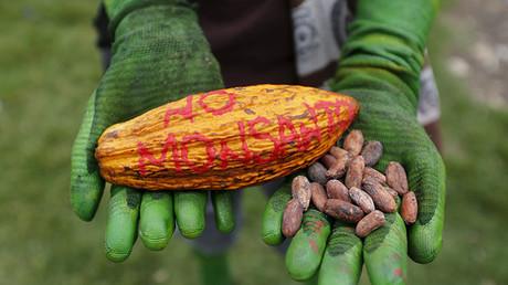 Un manifestante participa en una protesta contra Monsanto en Bogotá, Colombia.