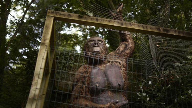 Modelo de tamaño natural de un 'gigantopithecus' presentado en el parque Karpin Abentura en Valle de Carranza, España