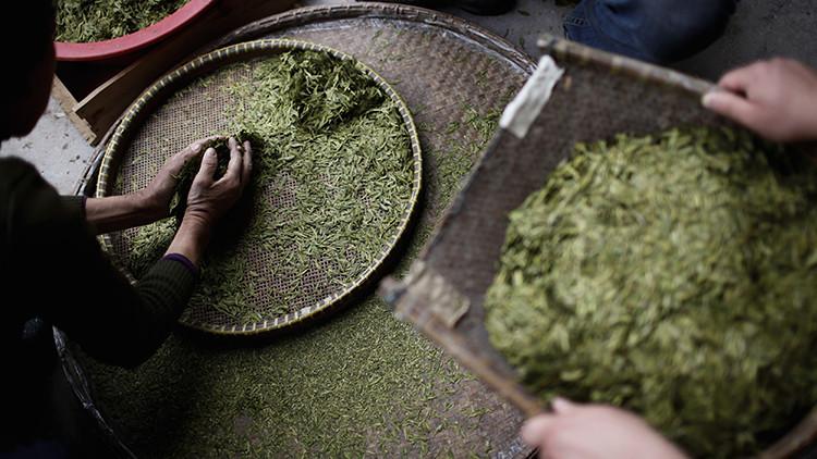 Hallan el té más antiguo del mundo en la tumba de un emperador chino