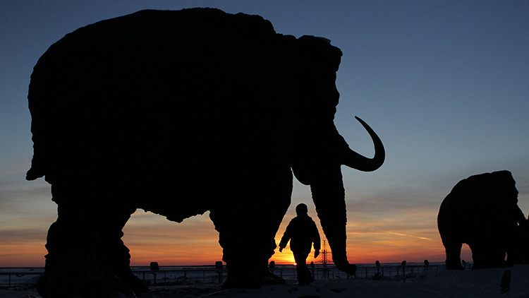 Una marca en los huesos de un mamut confirma que había humanos en el Ártico hace 45.000 años