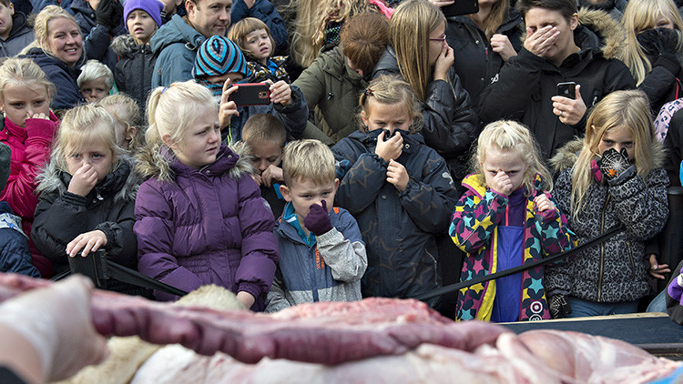 Un zoológico de Dinamarca descuartiza a un león frente a decenas de niños