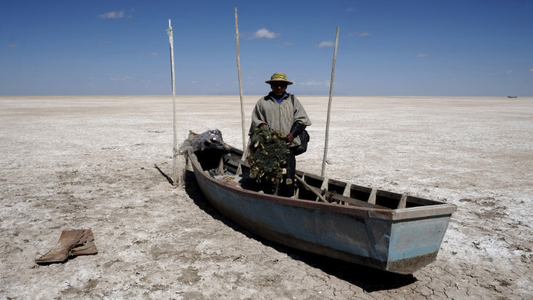 Desastre natural en Bolivia: millones de animales mueren tras desparecer un lago