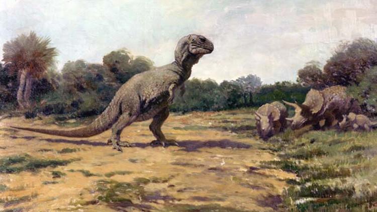 Se cae el mito de 'Parque Jurásico': ¿Habría podido un humano huir corriendo de un tiranosaurio?