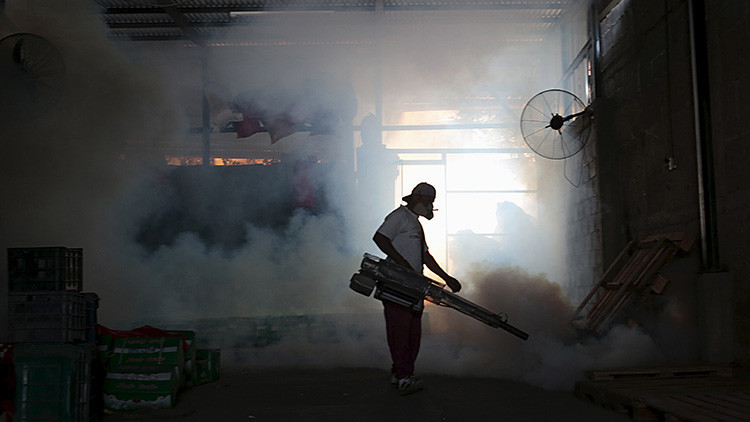Alerta sanitaria por el alcance del zika: ¿Podría ser transmitido por el mosquito común?