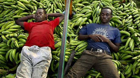 Dos hombres duermen encima de un camión cargado con plátanos en las afueras de Puerto Príncipe, Haití