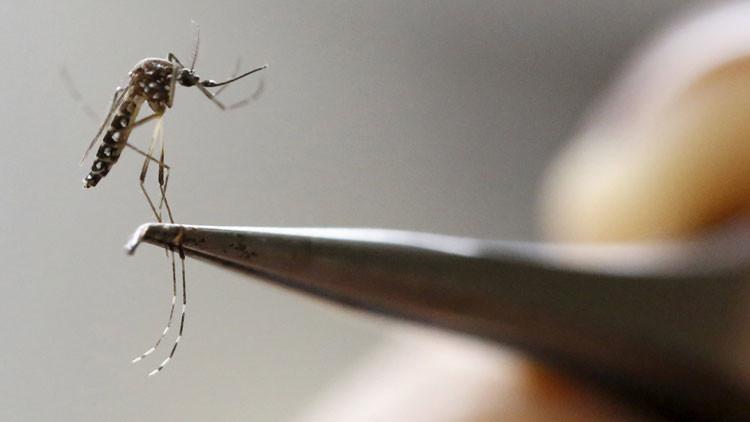 ¿Por qué el brote del virus del Zika es más grave de lo que imaginaban?