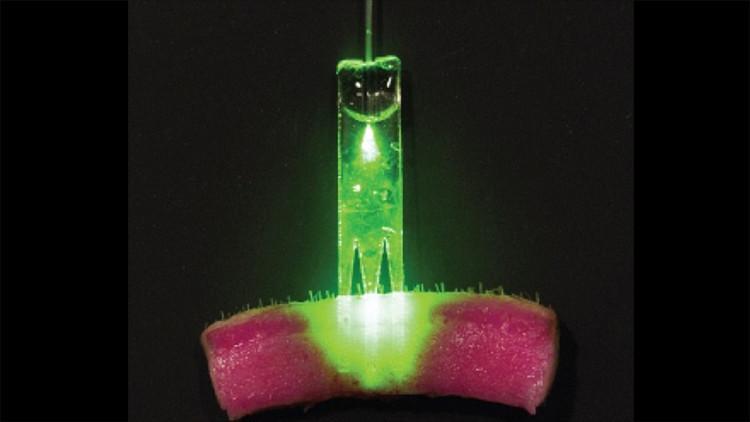 Dispositivo con láseres al estilo 'Star Trek' cura las heridas en 15 minutos