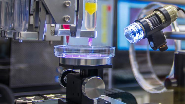 Los órganos fabricados con impresoras 3D son ya una realidad