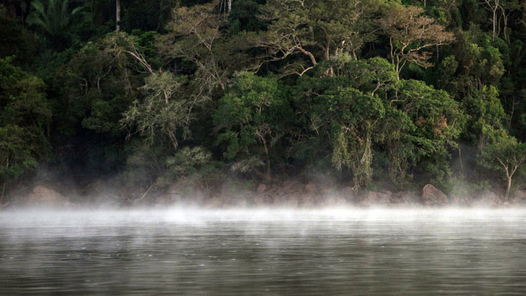 Descubren un legendario río que 'hierve' a sus víctimas en el corazón de la selva amazónica