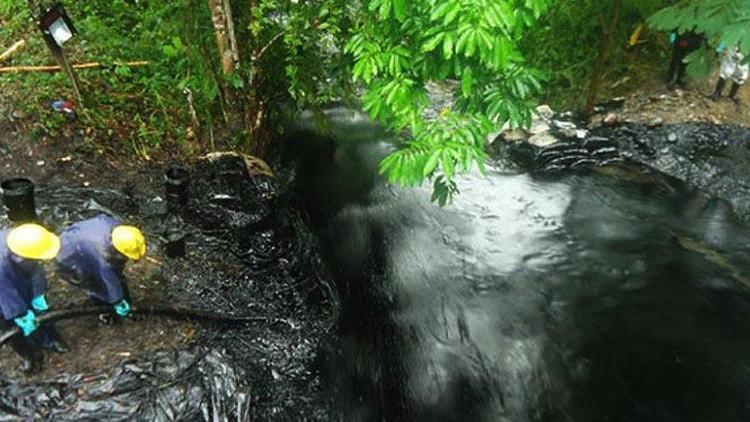 Desastre ecológico: un video genera indignación en Perú
