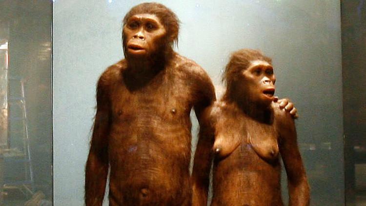 Hallan un cromosoma de hombre moderno en el ADN de un neandertal