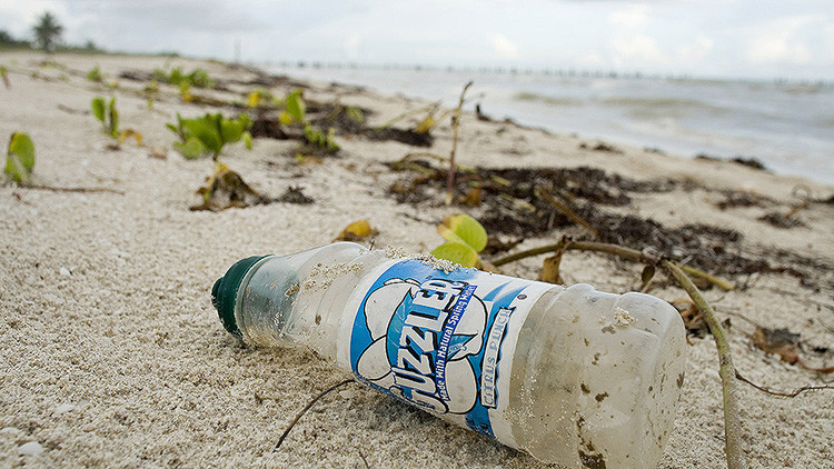 ¿Hay una solución a la contaminación? Encuentran un bacteria que devora plástico