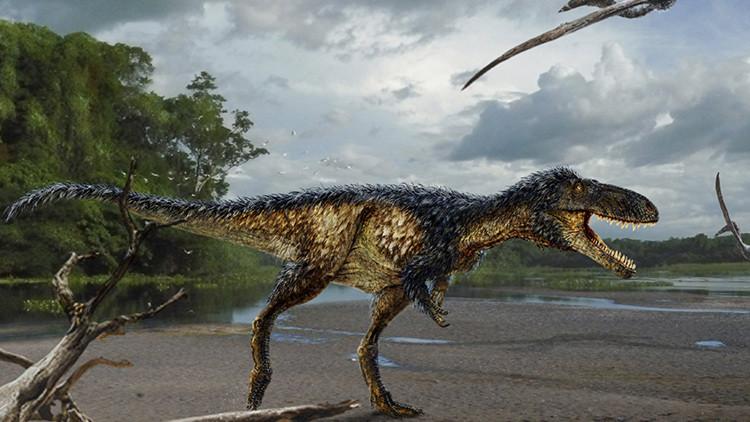 El hallazgo de un nuevo tiranosaurio ayuda a comprender a los mayores depredadores de la Tierra