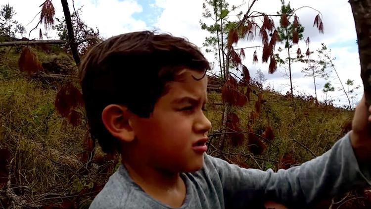 """""""El planeta se muere"""": un niño hondureño denuncia la tala masiva de árboles en la Tierra (VIDEO)"""