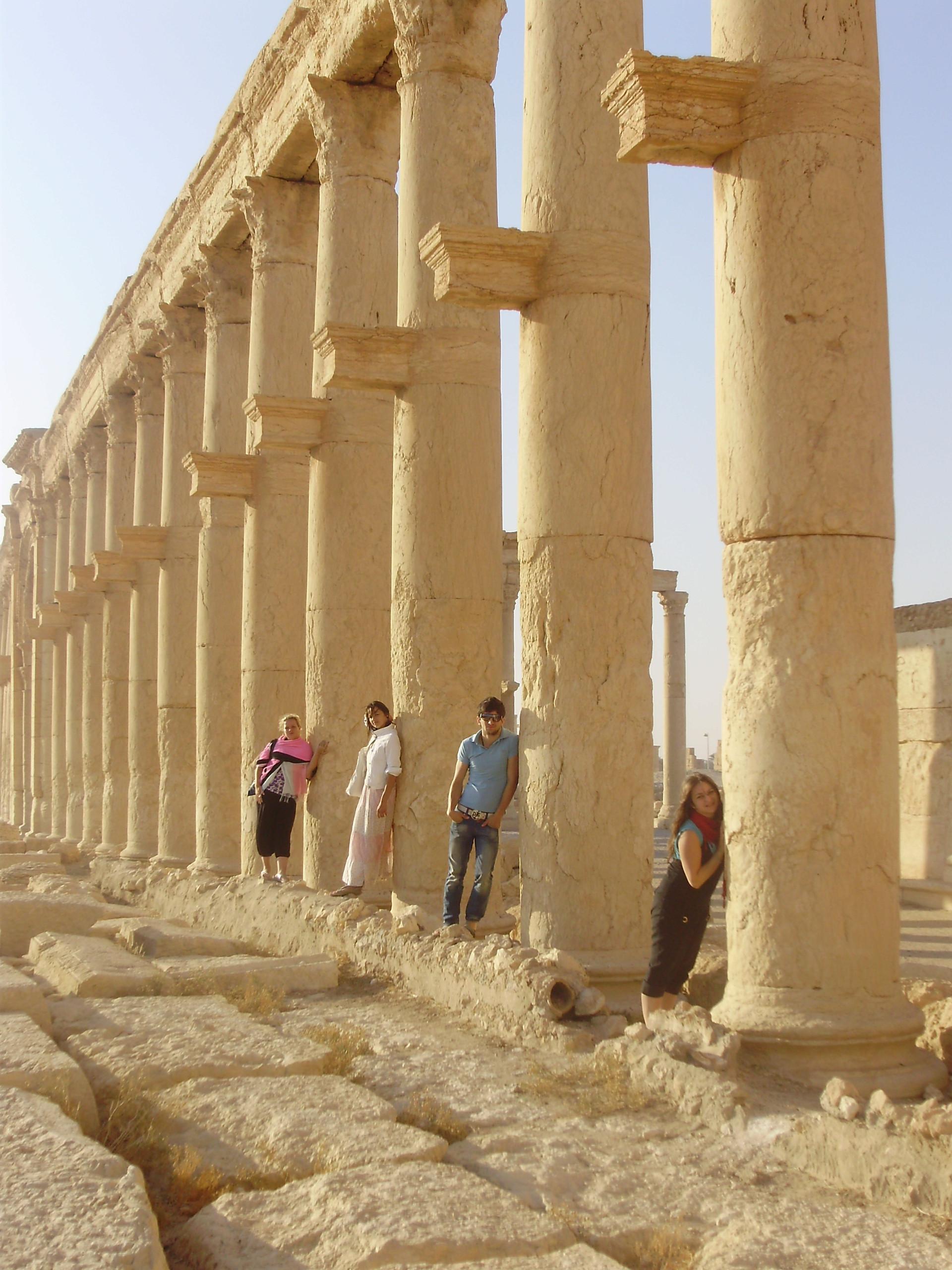 Palmira, 2008