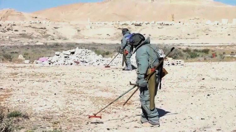 Video: Сómo los zapadores y robots rusos desactivan cientos de minas en Palmira