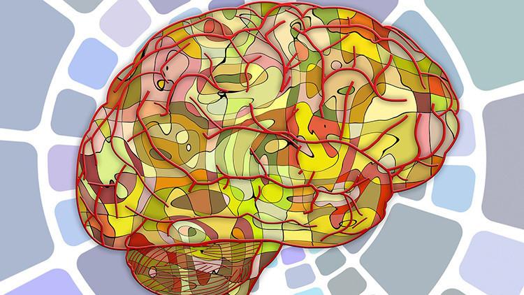 Descubren que las células 'limpiadoras' del cerebro pueden volverse 'caníbales'