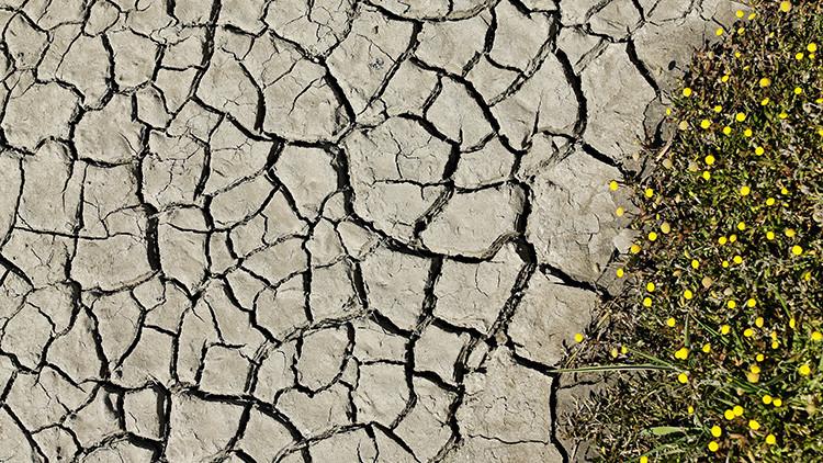¿Cuánto falta para el inevitable colapso de la civilización?
