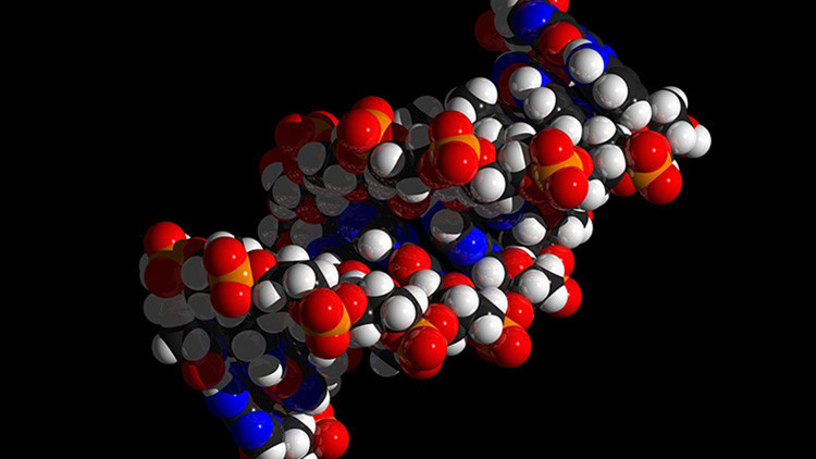 El archivo 'invisible': Descubren cómo almacenar y recuperar imágenes digitales en moléculas de ADN