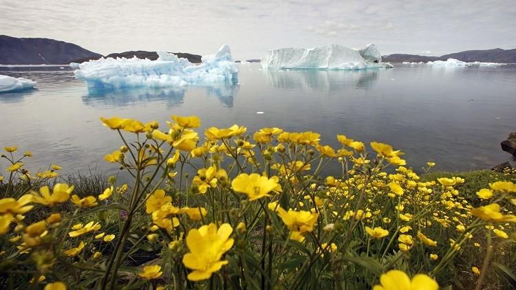 Inquietante récord: Groenlandia se derrite dos meses más rápido de lo esperado