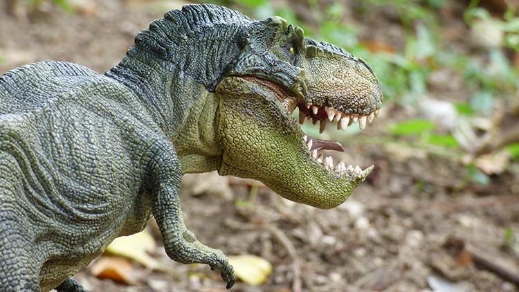 ¿Un asteroide no hizo desaparecer a los dinosaurios? Los científicos arrojan luz sobre su extinción
