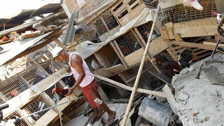 Video: Estremecedor rescate de un perro atrapado bajo escombros tras el terremoto en Ecuador