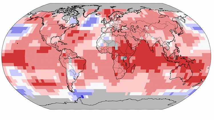 Al planeta no le baja la temperatura: Récord de calor en todo el mundo por undécimo mes consecutivo