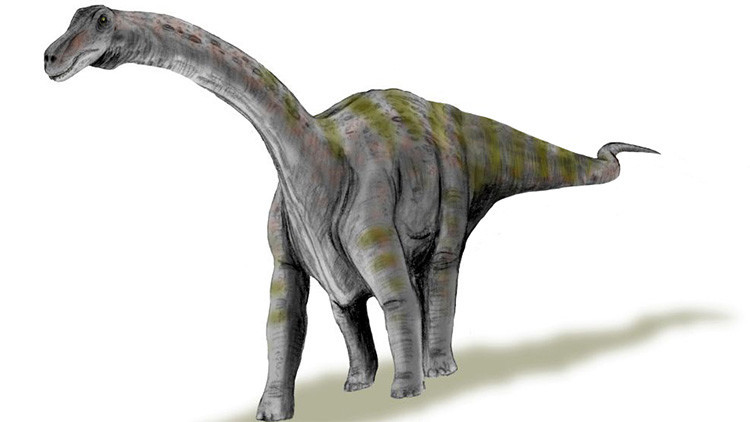 Así eran las crías del dinosaurio más grande del mundo al nacer