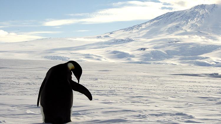 Descubren un gigantesco lago subterráneo en la Antártida que podría albergar vida ancestral