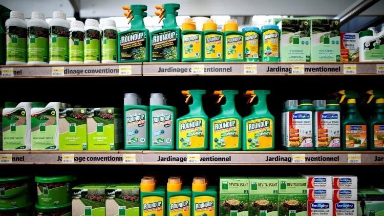 Monsanto contrataca: una nueva tecnología hará que los cultivos sean más resistentes a las plagas