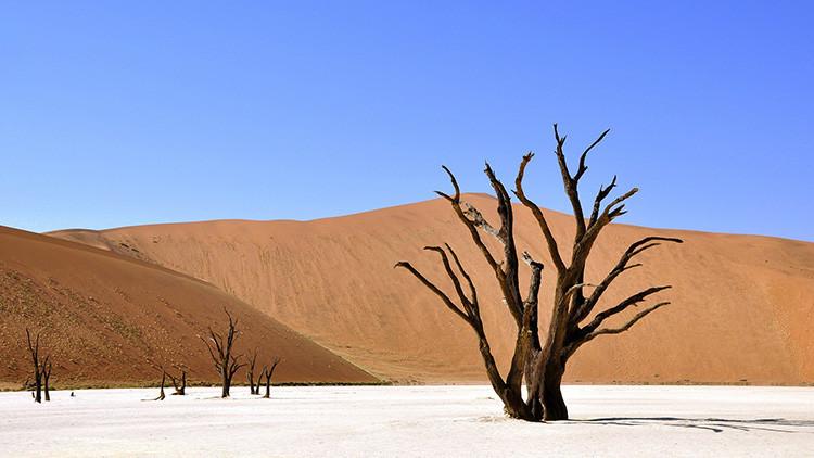 Calor extremo: Para el 2050 varios países serán inhabitables